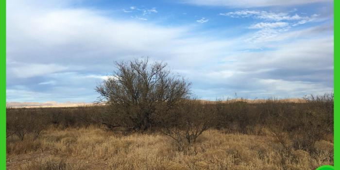 15.87-acres-in-cochise-az-1