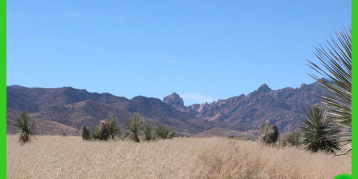 15.87-acres-in-cochise-az-3