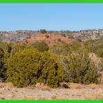 20-acres-apache-az-8